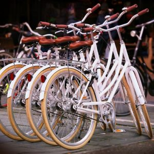 white bikes lined for sale new